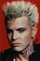 Billy Idol signed autographs